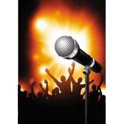 Laul verelilledest - Dm - Karaoke